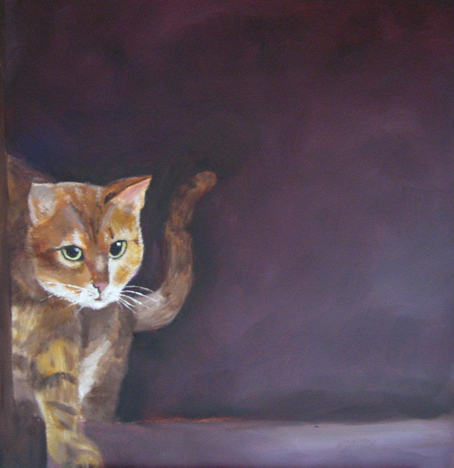 Bild: Katze 2012